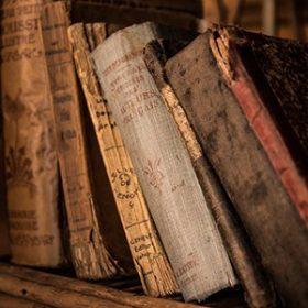Könyvespolcok, vitrinek